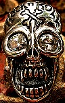 89W. Rock n Roll Silver Skull Ring.jpg